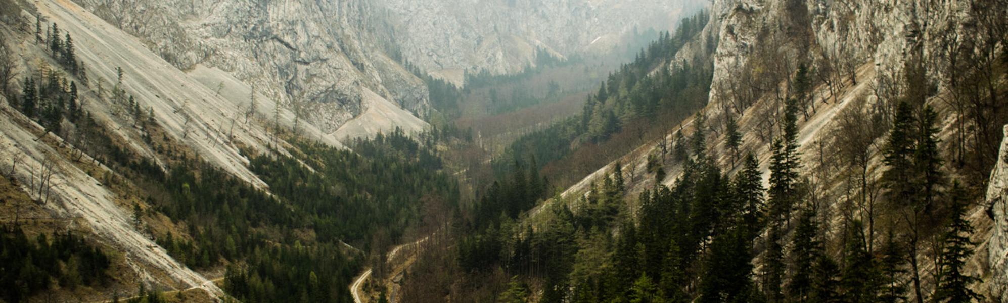 Landschaftsbild